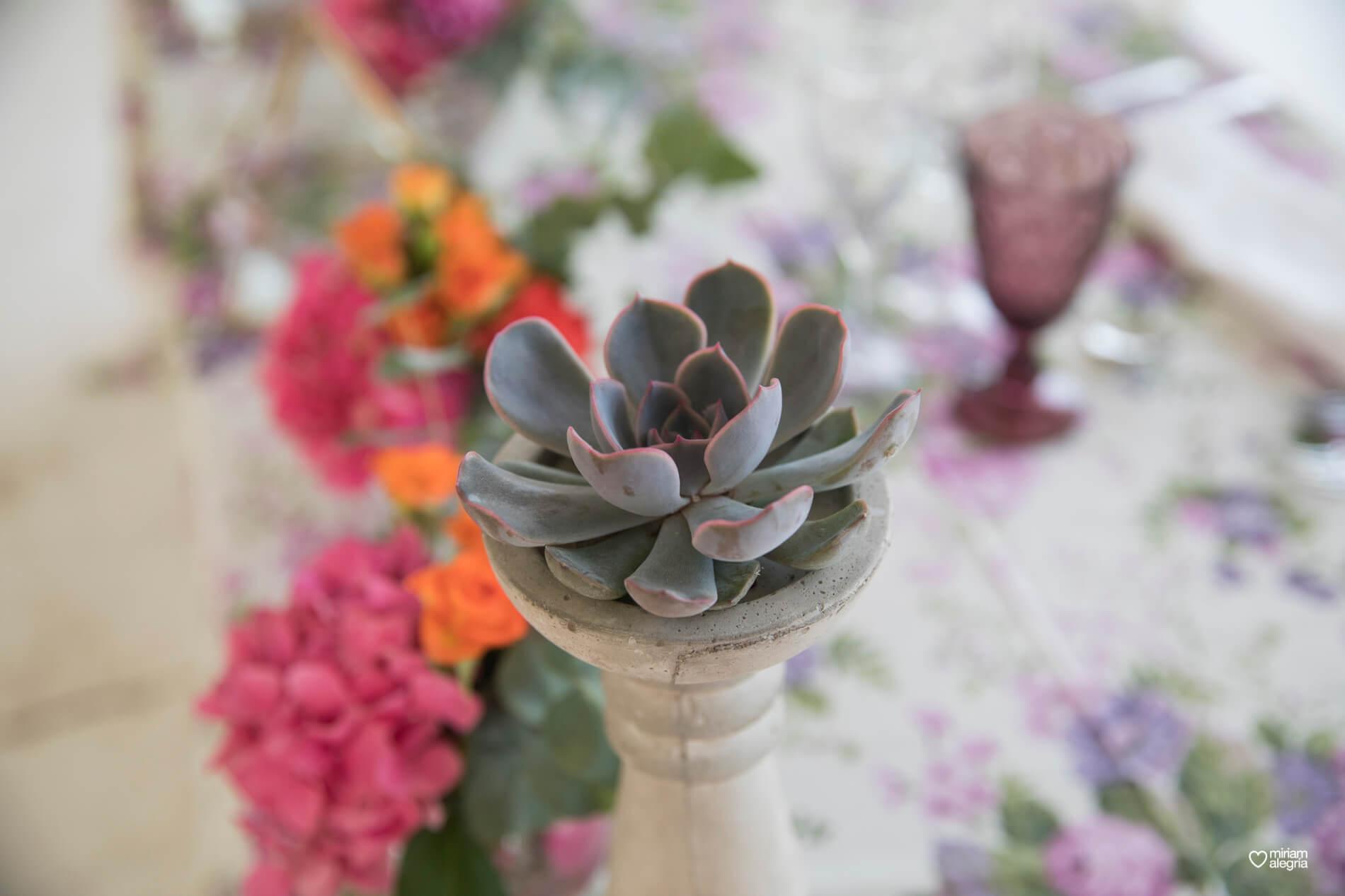 boda-en-finca-villa-vera-de-alemc7-miriam-alegria-fotografos-boda-murcia-123