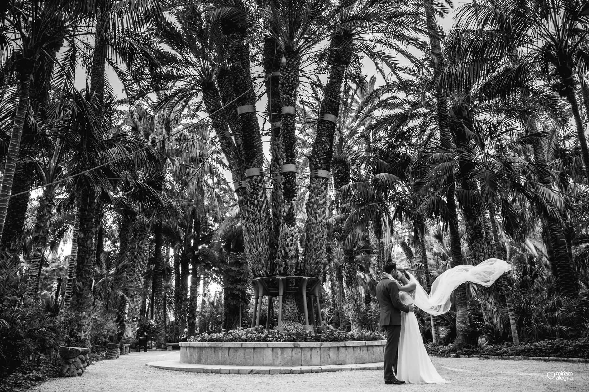 wedding-huerto-del-cura-elche-miriam-alegria-fotografos-boda-27